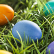 Colorful Dyed Eggs for Easter — Stok Fotoğraf #42013885