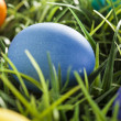 Colorful Dyed Eggs for Easter — Stok Fotoğraf #42013891
