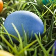 Colorful Dyed Eggs for Easter — Zdjęcie stockowe #42013891