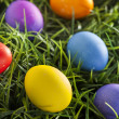 Colorful Dyed Eggs for Easter — Stok Fotoğraf #42013899