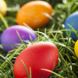 Colorful Dyed Eggs for Easter — Stok Fotoğraf #42013909