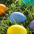 Colorful Dyed Eggs for Easter — Stok Fotoğraf #42013923