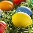 Colorful Dyed Eggs for Easter — Stok Fotoğraf #42013927