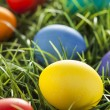 Colorful Dyed Eggs for Easter — Stok Fotoğraf #42013949