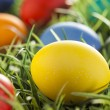 Colorful Dyed Eggs for Easter — Stok Fotoğraf #42013953