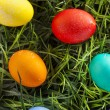 Colorful Dyed Eggs for Easter — Stok Fotoğraf #42014011