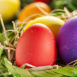 Colorful Dyed Eggs for Easter — Stok Fotoğraf #42014027