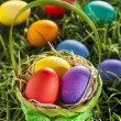 Colorful Dyed Eggs for Easter — Stock fotografie #42014067