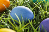 Colorful Dyed Eggs for Easter — Stock Photo