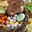 Chocolate Easter Bunny in a Basket — Stock Photo #42148807