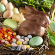 Chocolate Easter Bunny in a Basket — Stock Photo #42149033