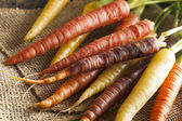Colorful Multi Colored Raw Carrots — Stock Photo