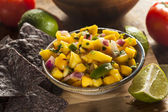 Fresh Homemade Mango Salsa — Stock Photo