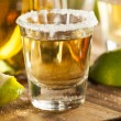 Tequila Shots with Lime and Salt — Stock Photo #42859551
