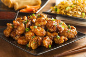 Asian Oranage Chicken with Green Onions — 图库照片