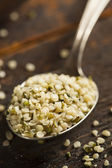 Organic Hulled Hemp Seeds — Stock Photo