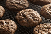 Homemade Double Chocolate Chip Cookies — Stock Photo
