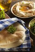 Homemade Organic Pita Bread — Stock Photo