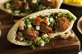Healthy Vegetarian Falafel Pita — Stock Photo