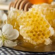 Organic Raw Golden Honey Comb — Stock Photo #46466487