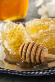 Organic Raw Golden Honey Comb — Stock Photo