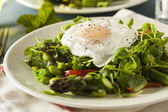 Healthy Scafata with a Poached Egg — Stock Photo
