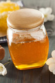 Organic Raw Golden Honey Comb — Stock Photo