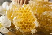 Organik ham altın bal tarak — Stok fotoğraf