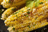 Delicious Grilled Mexican Corn — Stock Photo