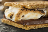 S'mores with Marshmallows Chocolate and Graham Crackers — Stock Photo