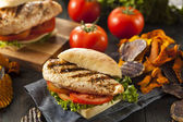 Healthy Grilled Chicken Sandwich — Stock Photo