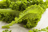 Organic Raw Mustard Greens — Foto de Stock