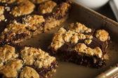 Homemade Chocolate Revel Brownie Bars — Stock Photo