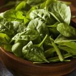Raw Green Organic Baby Spinach — Stock Photo #49454549