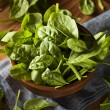 Raw Green Organic Baby Spinach — Stock Photo #49454599