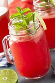 Refreshing Homemade Watermelon Agua Fresca — Stock Photo
