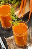 Organic Raw Carrot Juice — Stockfoto