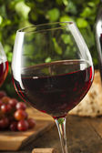 Refreshing Red Wine In a Glass — Foto de Stock