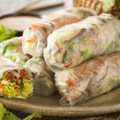 Healthy Vegetarian Spring Rolls — Stock Photo #50501409