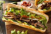 Vietnamese Pork Banh Mi Sandwich — Stock Photo