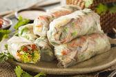 Healthy Vegetarian Spring Rolls — Stock Photo