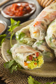 Healthy Vegetarian Spring Rolls — Stock Photo