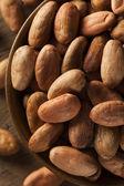 Raw Organic Cocoa Beans — Stock Photo