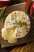 Homemade Baked Brie with Honey — Photo