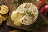 Homemade Baked Brie with Honey — Stock Photo