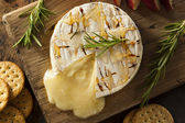 Homemade Baked Brie with Honey — Stockfoto