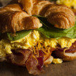 Ham and Cheese Egg Breakfast Sandwich — Stock Photo #51337547