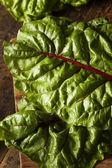 Raw Organic Red Swiss Chard — Stock Photo