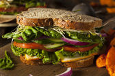 Healthy Vegetarian Veggie Sandwich — Stock Photo