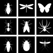 Stock Vector: Icons insects